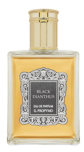 black-dianthus